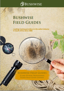 Bushwise FGASA Professional Field Guide Course E-brochure