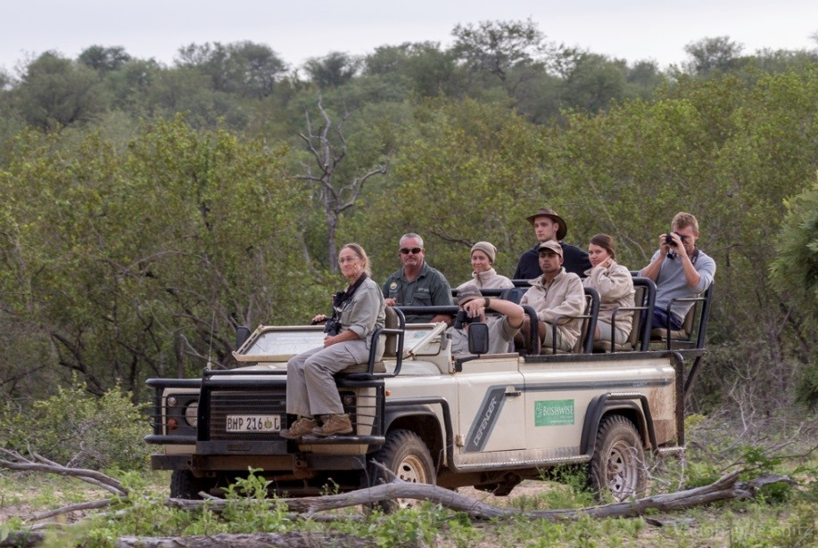 Game drive blog pic 4