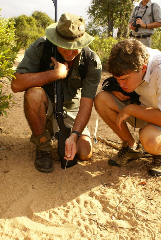 Top tips from Industry experts for Field Guides
