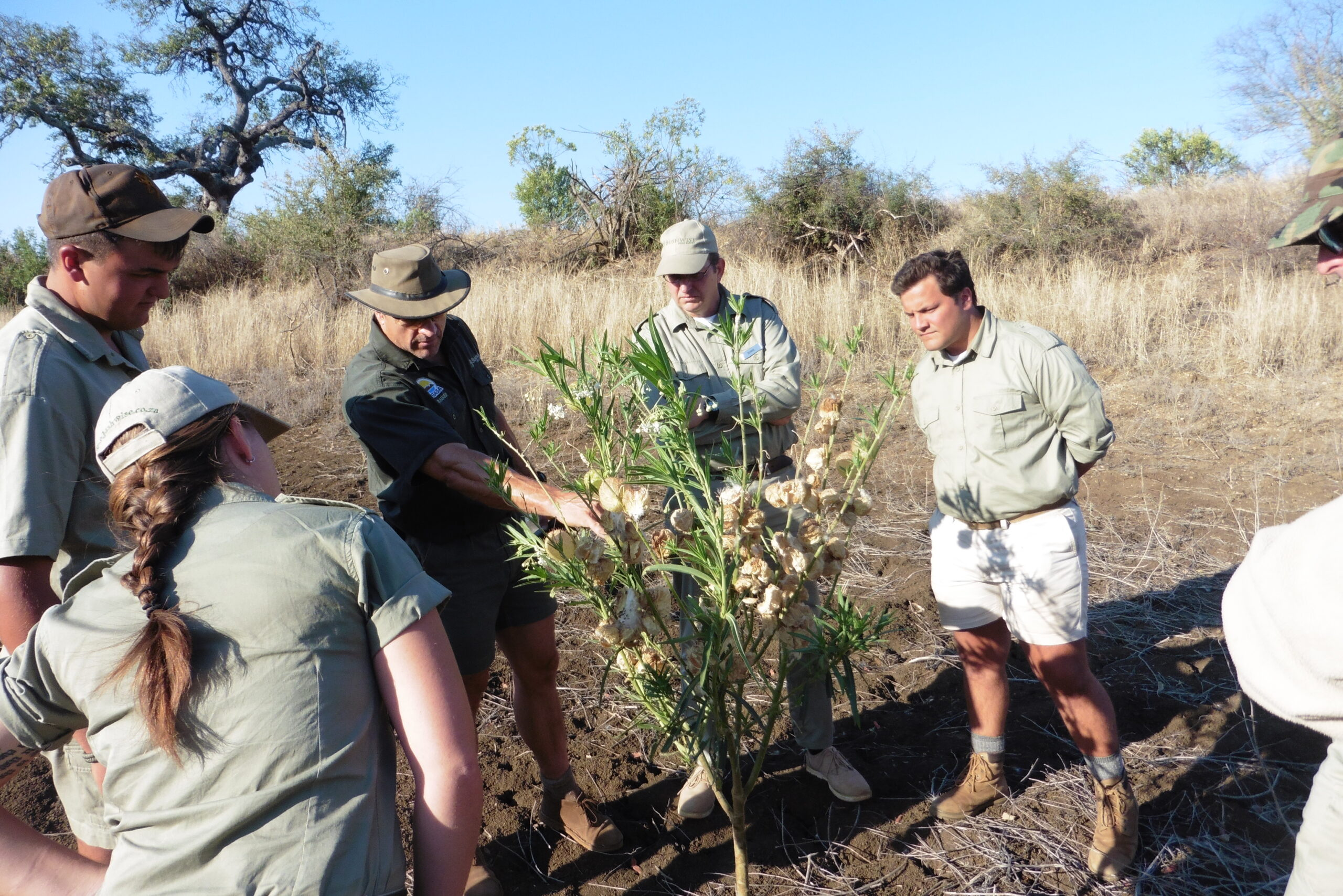 Focus on mammals and plenty game drives……..