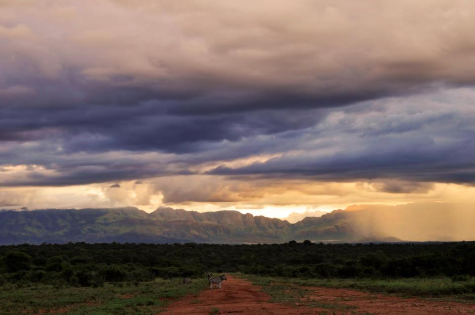 The Impact of Drought & Rain cycles in the Lowveld