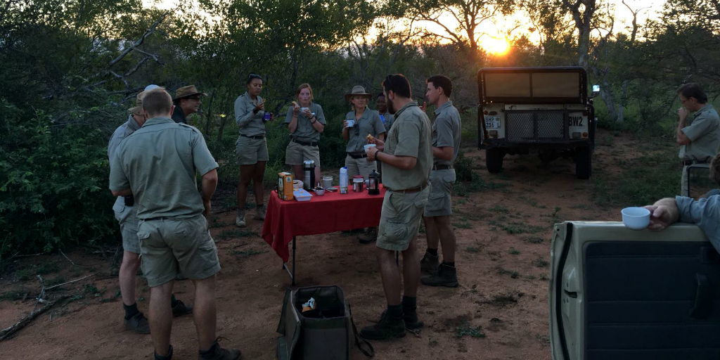 Have a morning picnic as a field guide in the African bushveld.