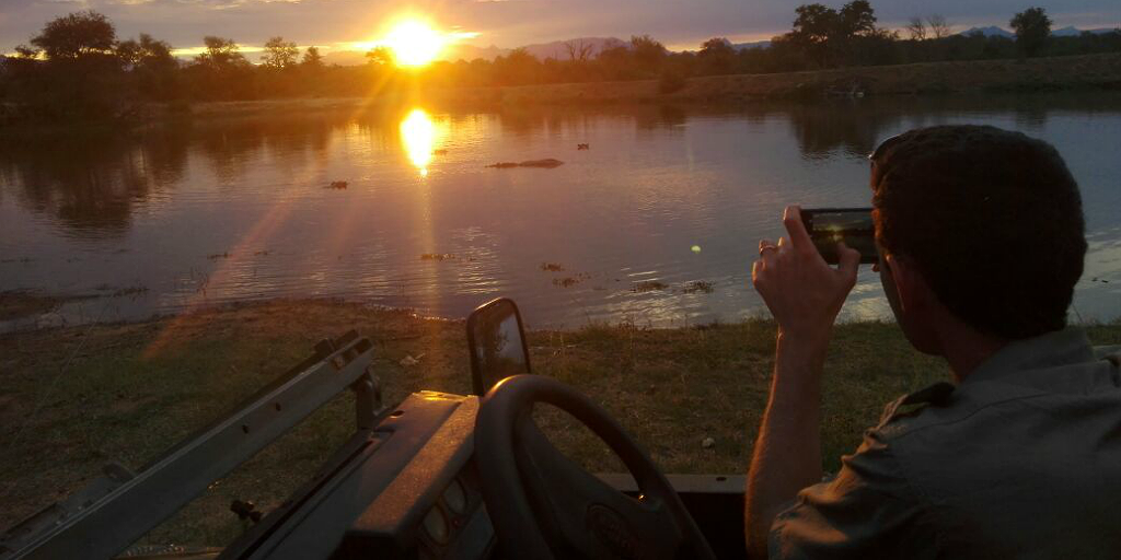 Capture the sunset as a FGASA field guide.