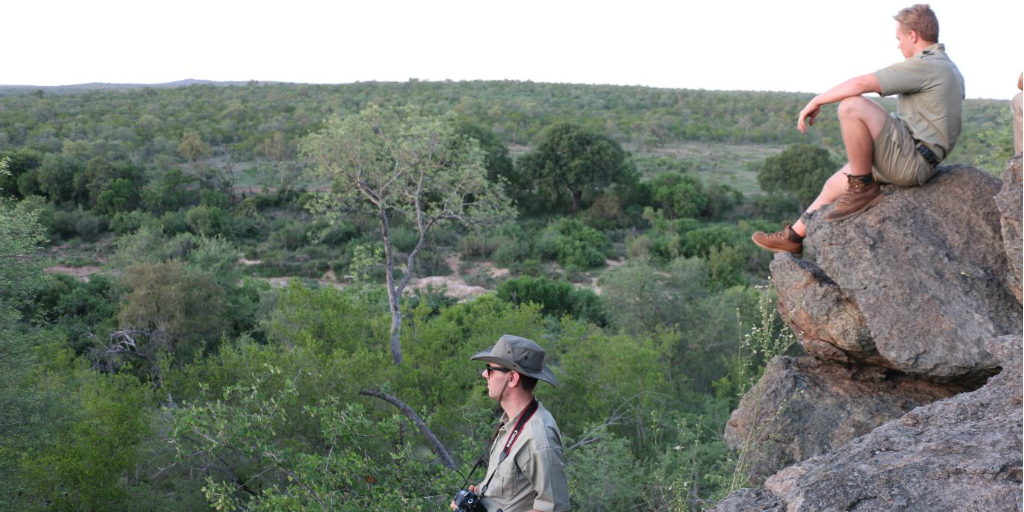 Two field guides looking out over a thicket from a rocky outcrop.