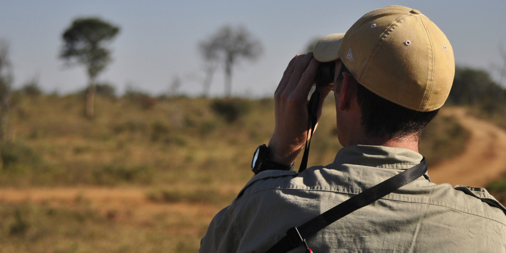 A field guide looking over the terrain in the wild with binoculars.