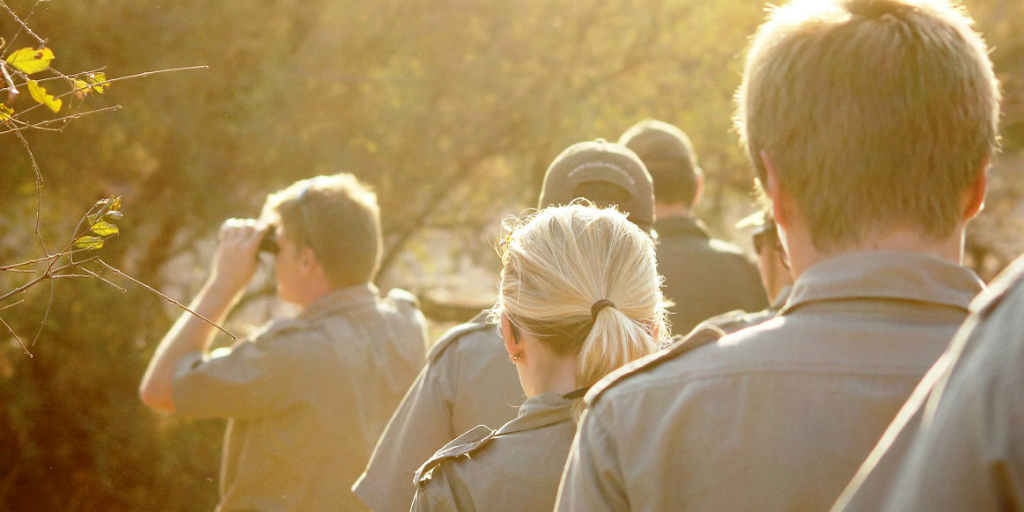 Five of the biggest differences between field guides and game rangers
