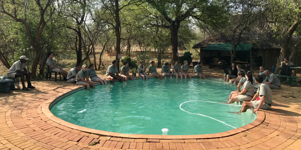 Bushwise students relax by the pool during their time off from field guiding in Limpopo