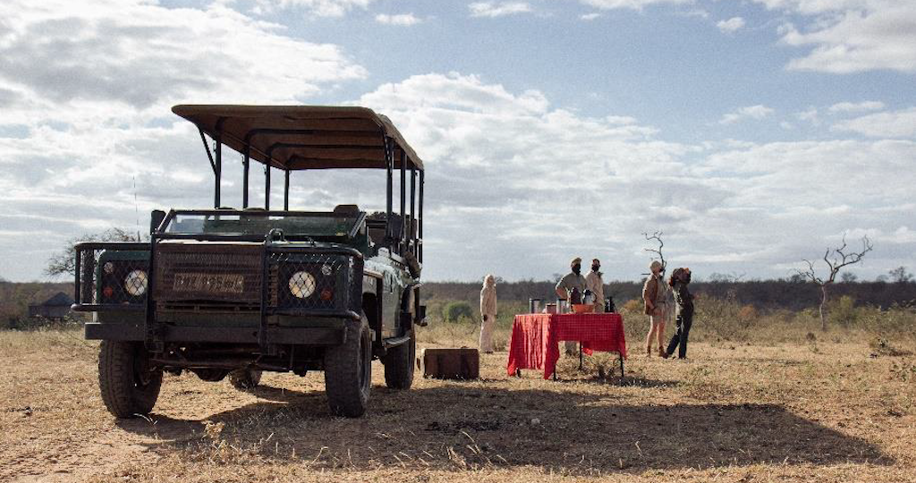 Game drives and more game drives