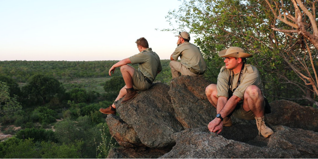 Why geology matters in field guiding