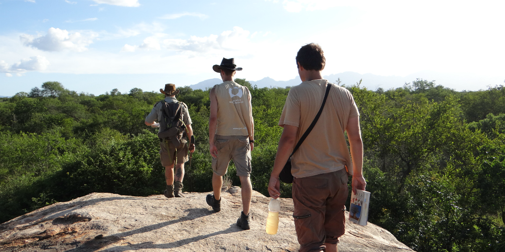 Why Bushwise offers the best accommodation for aspiring field guides