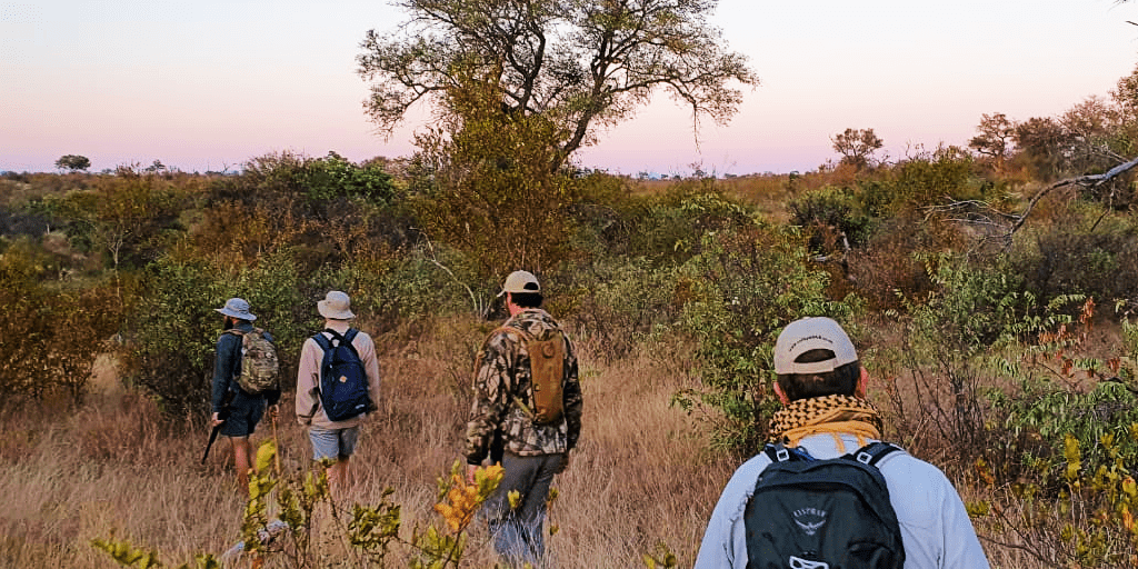 Field guides walking looking for wildlife.