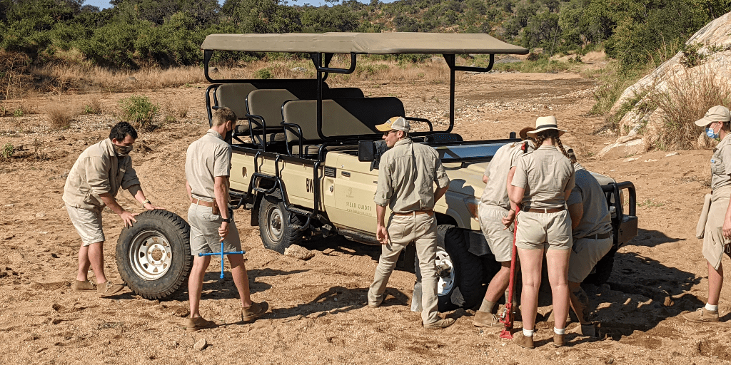 Field guides fixing a tire while on a game drive
