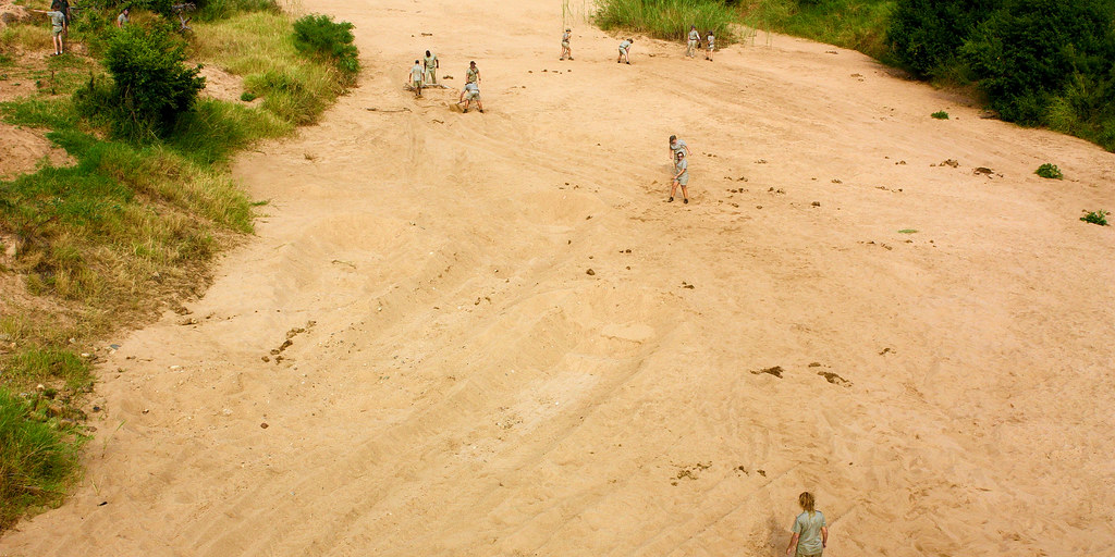 Field guides exploring a sandy area