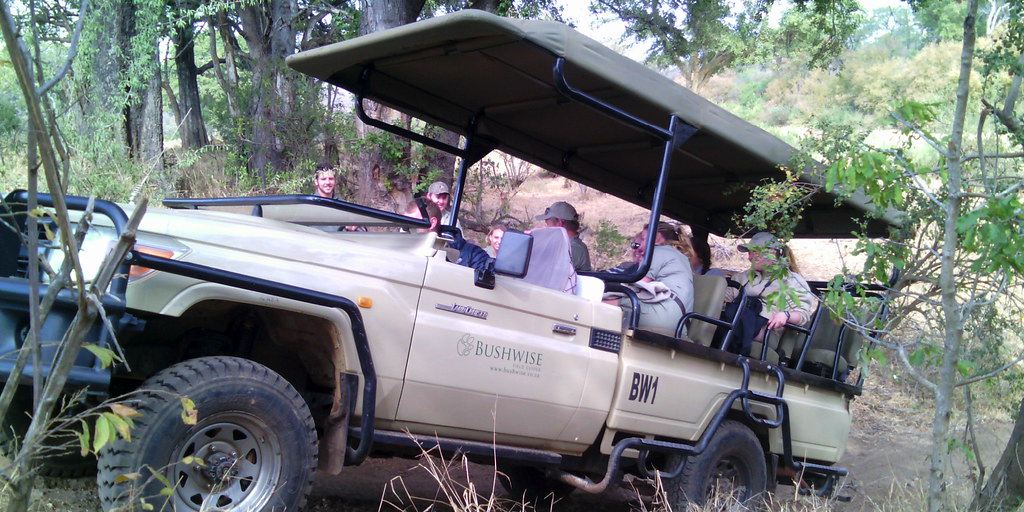 Field guides touring in vehicles