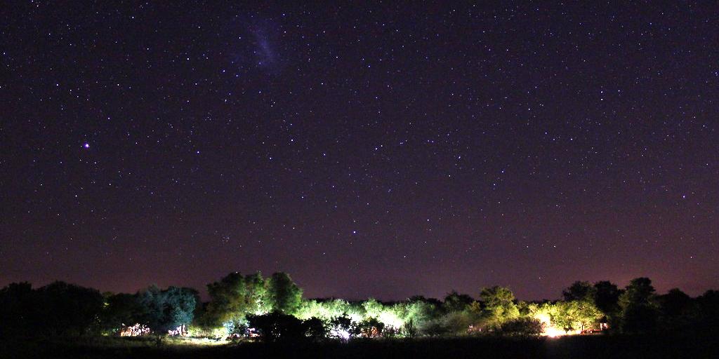 The star lit sky of the bush