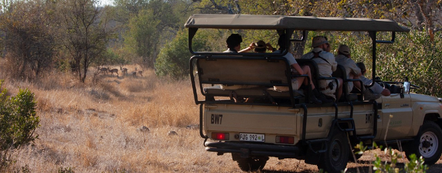 As a field guide, you can create an unforgettable experience for your guests.