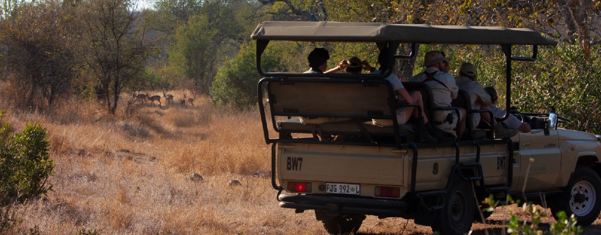Bushwise students on a game drive.